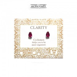 Ασημένια σκουλαρίκια Clarity (Ε177)