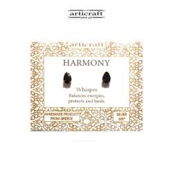Ασημένια σκουλαρίκια Harmony (Ε179)